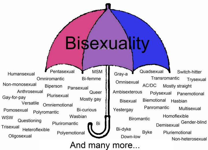 What is a bisexual person pic 11